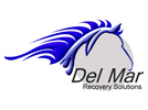 Del Mar Recovery Solutions